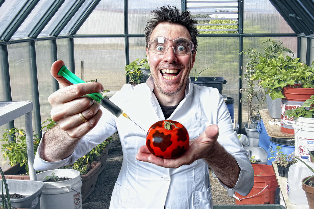 crazy scientist injecting tomatoes